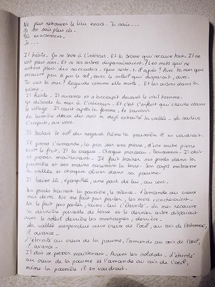 http://www.mounasaboni.com/files/gimgs/47_la-poussiere.jpg